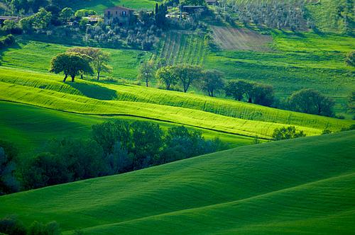 Tuscany Hills