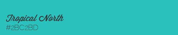 Colour swatch #2BC2BD