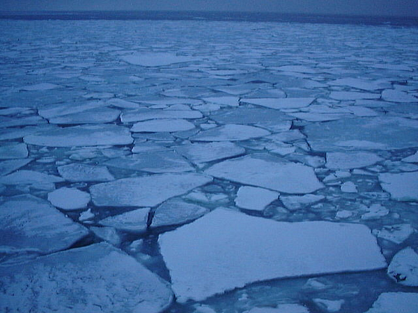 Drift ice sheets