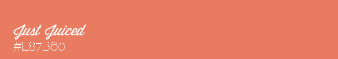 Colour swatch #E87B60