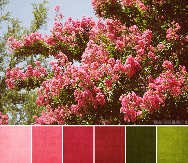 Flower tree and colour palette