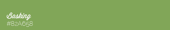 Colour swatch #82A658