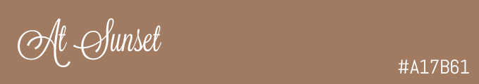 colour swatch #A17B61