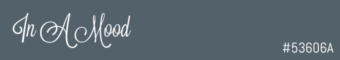 colour swatch #53606A